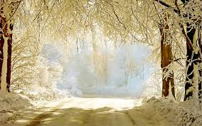 outdoor backgrounds. Beautiful Winter Background Outdoor Backgrounds