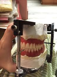 teeth setting 16 best dental education images on pinterest tooth dentistry and