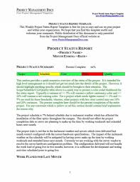 format of a management report 019 project management reporting templates status report