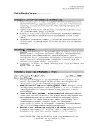 Resume Sample New Technical Summary Resume Sales Lewesmr Sample