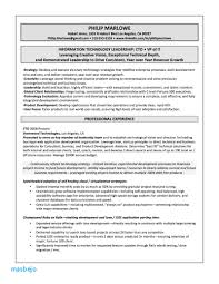 Ceo Resume Examples Best Executive Resume Examples 2018 That Work It