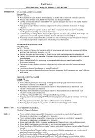 Audit Manager Resume Samples Senior Audit Manager Resume Samples Velvet Jobs