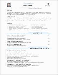 Excel Resume Examples 48 Cv Resume Format Jscribes Com