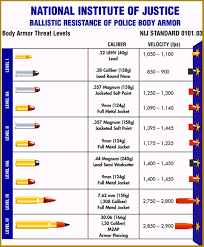Caliber Trajectory Chart 44 Studious Bullet Balistic Chart