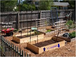 Small Picture Backyards Splendid Backyard Vegetable Garden Design Ideas