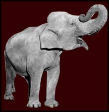 george orwell s essay on his life in burma shooting an elephant image