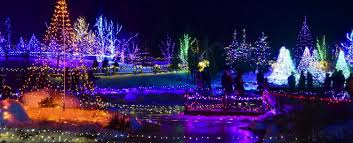 3 of the best reasons to attend gardens aglow this year