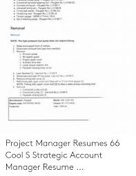 Project Manager Resumes 66 Cool S Strategic Account Manager