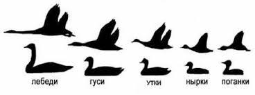 Фотоопределитель <b>птиц</b>