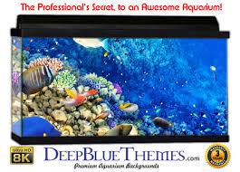 Fish Backgrounds Aquarium Backgrounds For Any Size Tank