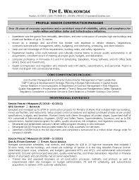 marketing project manager resume telecommunications project manager resume grayshon co cover resume examples manager resume objective examples vice marketing