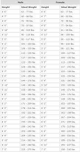 English Mastiff Growth Chart Height 78 Inquisitive Mastiff Growth Chart Height