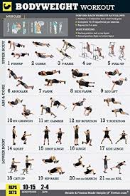 bodyweight exercise poster total body workout poster personal trainer fitness program for men home gym poster sculpts core abs legs glutes upper