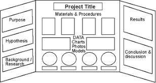 Reminder Of Science Fair Display Board Layout Content