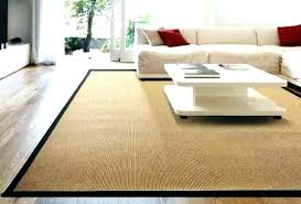 pottery barn outdoor rugs synthetic sisal rug contemporary beautiful border solid review r sisal rug scroll to next item pottery barn