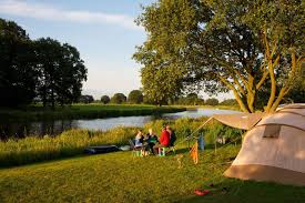 Camping de roos reviews