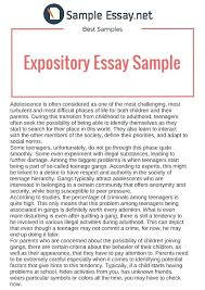 Resume In English Sample Essays Examples Example Resume Sample