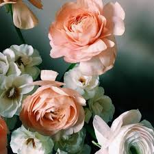 average american flower size average cost of wedding flowers making the most of a floral budget