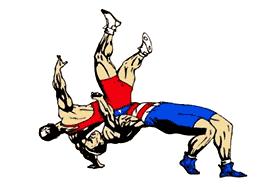 Спортивная борьба вольная борьба