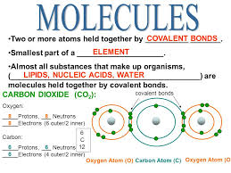 molecules two or more atoms held together by