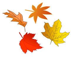 Bildresultat för gilla hösten