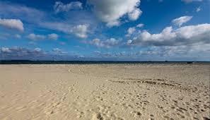 beach. Fine Beach Ryde Beach  In