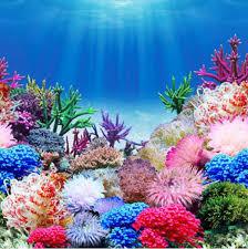 Aquarium Poster Background 1000 Ideas Shark Fish Tank