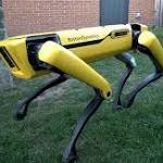 Boston Dynamics' SpotMini Robot Dog Looked Right at Us, and it was Downright Creepy