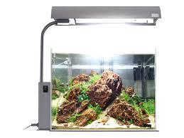 Die Aquarien Beleuchtung