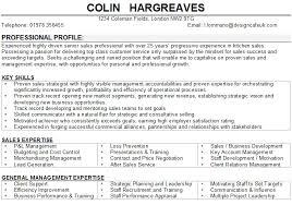 Resume Sample Senior Executive Page