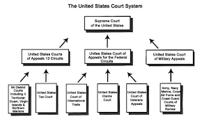 United States Court System Flow Chart Us Court System State Court Supreme Court United States
