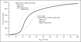 Co2 To O2 Conversion Chart Oxygen Carbon Dioxide Gas Exchange And Transport In