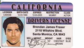 License Fake Fraser d James Identification Sports Outdoors amp; Amazon com I Drivers Brendan Novelty