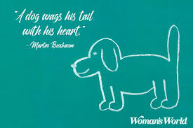 Pet Quotes Delectable Quotes About Losing A Dog To Remember Them In Pet Heaven Woman's World