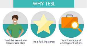 tesl course in eduadvisor why should you study tesl