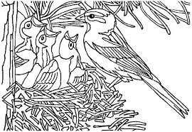 Bird Nest Coloring Page Baby In A Pages Free Printable Ilovezclub