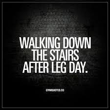 Funny Leg Quotes