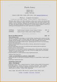 Executive Resume Writer Luxury It Resume Writing Services New
