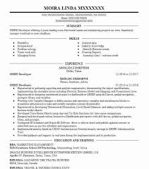 Obiee Developer Resume Sample Developer Resumes Livecareer