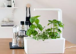 indoor hydroponic gardening. Coziness Together With Wonder Can Be A Must In Dwelling, Addition To Indoor Hydroponic Garden Image Gallery Provide Numerous Plus The Buildings Gardening K