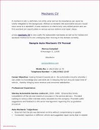 Cv Resume Sample Free Objectives Examples For Cv Best Sample College