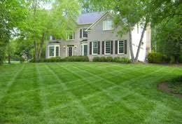 Image result for freshly cut lawn