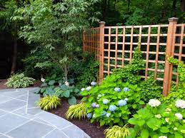 Climbing Plants On The Garden Walls  WwwcoolgardenmeClimbing Plants For Fence