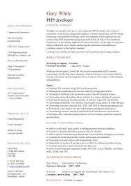 Php Developer Resume Php Developer Cv Sample Areas Of Expertise Web Design Jobs