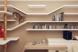 pet friendly furniture. if your feline friend prefers a higher spot to watch the world from shelves are good way keep them entertained these hey pet friendly furniture y