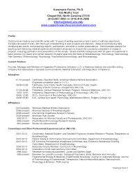 Technical Writer Sample Resume Impressive Resume Examples Technical