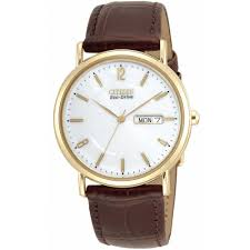 citizen men s eco drive gold leather strap watch