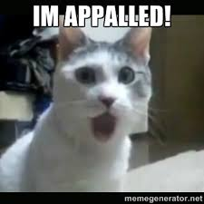 im appalled! - Surprised Cat | Meme Generator via Relatably.com