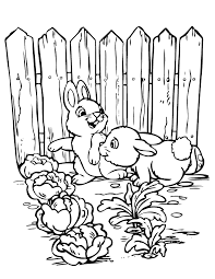 Small Picture 2 Cute Rabbits In Garden Coloring Page H M Coloring Pages