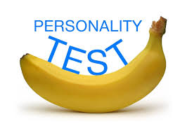 a fun personality test minddirectors